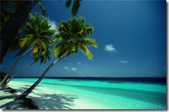 125-tropical_beach-500