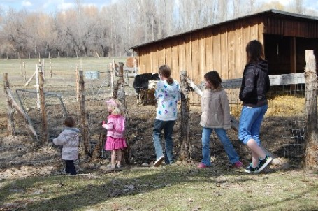 5-girls-on-a-farm-medium-web-view.jpg